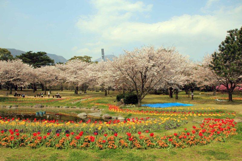 Roam Around Beppu Park
